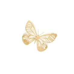 Butterfly1[1]